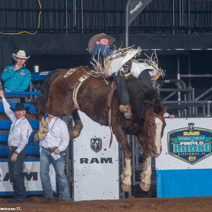 Wyatt Bloom on Hawley Falls at the 2017 RAM National Circuit Finals in Kississmee, Florida. Photo by Ric Andersen and PRCA